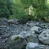 Kinkišos upės vaga | Fotografijos autorius : Gintautas Steiblys | © Macrogamta.lt | Šis tinklapis priklauso bendruomenei kuri domisi makro fotografija ir fotografuoja gyvąjį makro pasaulį.