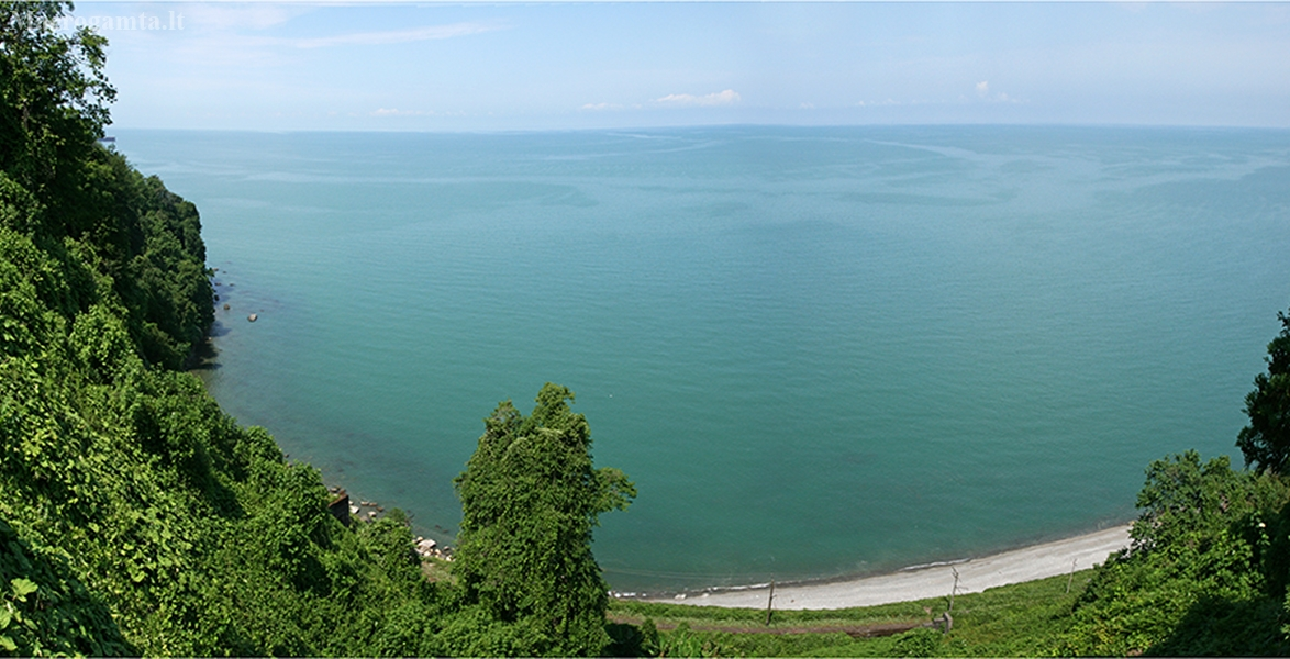 Juodoji jūra nuo Batumio bot. sodo | Fotografijos autorius : Gintautas Steiblys | © Macrogamta.lt | Šis tinklapis priklauso bendruomenei kuri domisi makro fotografija ir fotografuoja gyvąjį makro pasaulį.