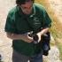 Deivis ruošiasi ieškoti orchidėjų | Fotografijos autorius : Gintautas Steiblys | © Macrogamta.lt | Šis tinklapis priklauso bendruomenei kuri domisi makro fotografija ir fotografuoja gyvąjį makro pasaulį.