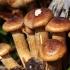 Tamsusis kelmutis - Armillaria ostoyae | Fotografijos autorius : Ramunė Vakarė | © Macrogamta.lt | Šis tinklapis priklauso bendruomenei kuri domisi makro fotografija ir fotografuoja gyvąjį makro pasaulį.