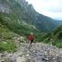 Tarpekliu link Giewont'o viršūnės. | Fotografijos autorius : Vitalijus Bačianskas | © Macrogamta.lt | Šis tinklapis priklauso bendruomenei kuri domisi makro fotografija ir fotografuoja gyvąjį makro pasaulį.