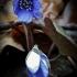 Triskiautė žibuoklė - Hepatica nobilis   Fotografijos autorius : Kęstutis Obelevičius   © Macrogamta.lt   Šis tinklapis priklauso bendruomenei kuri domisi makro fotografija ir fotografuoja gyvąjį makro pasaulį.
