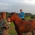 Merginos ir arkliai | Fotografijos autorius : Darius Baužys | © Macrogamta.lt | Šis tinklapis priklauso bendruomenei kuri domisi makro fotografija ir fotografuoja gyvąjį makro pasaulį.