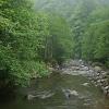 Chakvitskali upė | Fotografijos autorius : Gintautas Steiblys | © Macrogamta.lt | Šis tinklapis priklauso bendruomenei kuri domisi makro fotografija ir fotografuoja gyvąjį makro pasaulį.