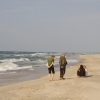 Prie jūros | Fotografijos autorius : Deividas Makavičius | © Macrogamta.lt | Šis tinklapis priklauso bendruomenei kuri domisi makro fotografija ir fotografuoja gyvąjį makro pasaulį.