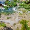 Salou pakrantės | Fotografijos autorius : Gintautas Steiblys | © Macrogamta.lt | Šis tinklapis priklauso bendruomenei kuri domisi makro fotografija ir fotografuoja gyvąjį makro pasaulį.