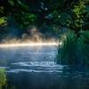 Ašmena ties Knistuškėmis | Fotografijos autorius : Darius Baužys | © Macrogamta.lt | Šis tinklapis priklauso bendruomenei kuri domisi makro fotografija ir fotografuoja gyvąjį makro pasaulį.