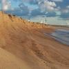 Baltijos jūros pakrantė | Fotografijos autorius : Gintautas Steiblys | © Macrogamta.lt | Šis tinklapis priklauso bendruomenei kuri domisi makro fotografija ir fotografuoja gyvąjį makro pasaulį.