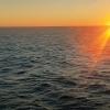 Saulėlydis jūroje | Fotografijos autorius : Gintautas Steiblys | © Macrogamta.lt | Šis tinklapis priklauso bendruomenei kuri domisi makro fotografija ir fotografuoja gyvąjį makro pasaulį.