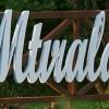 Stebuklinga vieta ta Mtirala.. | Fotografijos autorius : Gintautas Steiblys | © Macrogamta.lt | Šis tinklapis priklauso bendruomenei kuri domisi makro fotografija ir fotografuoja gyvąjį makro pasaulį.