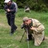Darbymetis | Fotografijos autorius : Deividas Makavičius | © Macrogamta.lt | Šis tinklapis priklauso bendruomenei kuri domisi makro fotografija ir fotografuoja gyvąjį makro pasaulį.