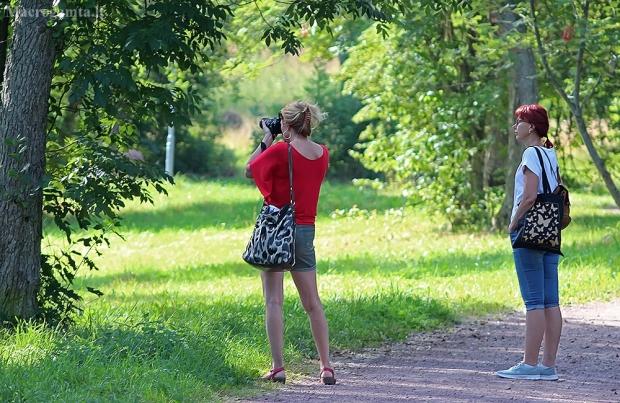 Matyt stirnas pamatė | Fotografijos autorius : Gintautas Steiblys | © Macrogamta.lt | Šis tinklapis priklauso bendruomenei kuri domisi makro fotografija ir fotografuoja gyvąjį makro pasaulį.