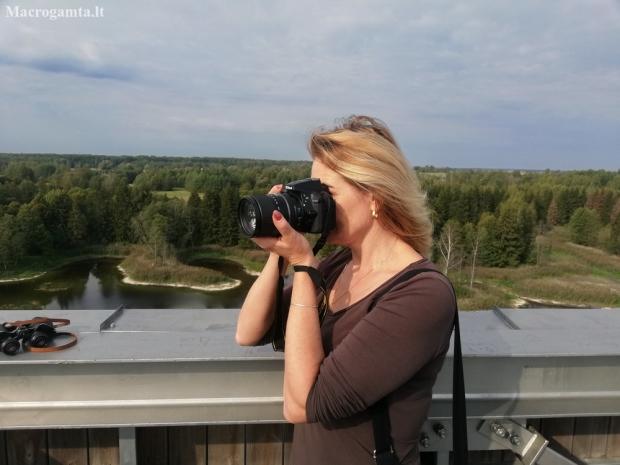 Rūšių Ralis - 2019   Fotografijos autorius : Nomeda Vėlavičienė   © Macrogamta.lt   Šis tinklapis priklauso bendruomenei kuri domisi makro fotografija ir fotografuoja gyvąjį makro pasaulį.