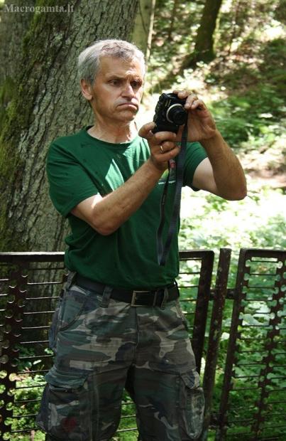 Rimtas fotografas..   Fotografijos autorius : Gintautas Steiblys   © Macrogamta.lt   Šis tinklapis priklauso bendruomenei kuri domisi makro fotografija ir fotografuoja gyvąjį makro pasaulį.