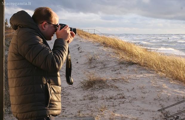 Saulėlydžio metas | Fotografijos autorius : Gintautas Steiblys | © Macrogamta.lt | Šis tinklapis priklauso bendruomenei kuri domisi makro fotografija ir fotografuoja gyvąjį makro pasaulį.