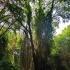 Bulgarija - Macrogamta   Fotografijos autorius : Deividas Makavičius   © Macrogamta.lt   Šis tinklapis priklauso bendruomenei kuri domisi makro fotografija ir fotografuoja gyvąjį makro pasaulį.