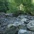 Kinkišos upės vaga   Fotografijos autorius : Gintautas Steiblys   © Macrogamta.lt   Šis tinklapis priklauso bendruomenei kuri domisi makro fotografija ir fotografuoja gyvąjį makro pasaulį.