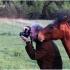 Sakai fo0kusas pabėgo ... | Fotografijos autorius : Valdimantas Grigonis | © Macrogamta.lt | Šis tinklapis priklauso bendruomenei kuri domisi makro fotografija ir fotografuoja gyvąjį makro pasaulį.