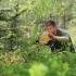 Šefas darbo įkarštyje | Fotografijos autorius : Gediminas Gražulevičius | © Macrogamta.lt | Šis tinklapis priklauso bendruomenei kuri domisi makro fotografija ir fotografuoja gyvąjį makro pasaulį.